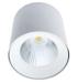 белые накладные потолочные светильники downlight ANTLIA LED