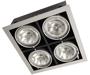 встроенные направленные светильники с поворотными лампами PEGASUS 4x