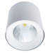 потолочные светодиодные накладные споты ANTLIA LED